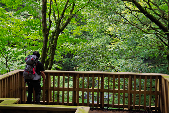 山歩きで運動支援・メンタルヘルス対策を改善させます